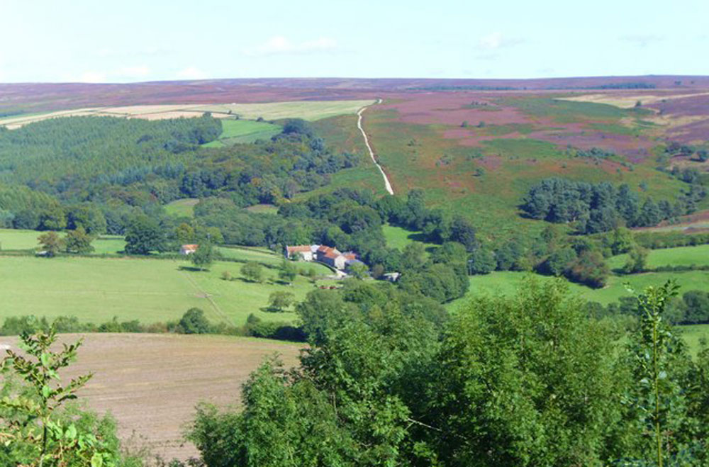 Get out and about exploring Gillamoor and the moors.
